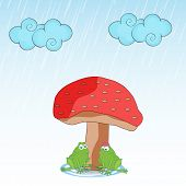 Cute frog couple making love under red mushroom plant in raining season.
