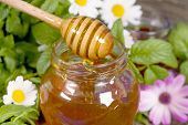 Seasonal Fresh Honey