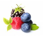 Raspberry, blackberry and blueberry isolated on white background