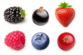 picture of fruits  - Summer berry fruits - JPG