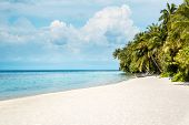 Tropical Maldives beach - Vacation Concept