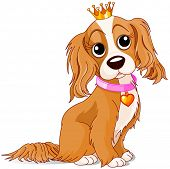 Cavalier King Charles Spaniel with crown