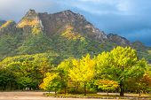 foto of seoraksan  - Seorak fall view in the morning light - JPG