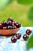 closeup of ripe, fresh and sweet cherries in a bowl on table in the garden