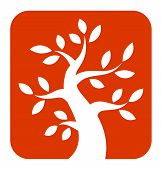 White Bold Tree icon on orange background
