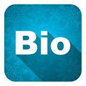 bio flat icon, christmas button