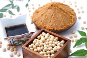 foto of soybeans  - Japaneese traditional soybean processed foods Miso - JPG