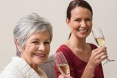 Smiling women holding glass of champagne at home in the living room