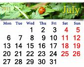 Calendar For The July Of 2015 With Ladybird On The Leaf