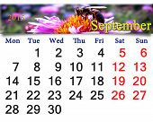 Calendar For September Of 2015 Year With Bee On The Flower