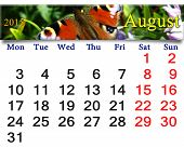Calendar For August Of 2015 Year With Butterfly Of Peacock Eye