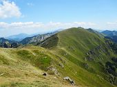stock photo of apennines  - A panoramatic view of the grassy Apennine mountains in Italy - JPG