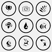 Abstract set. Black and white set vector icons.