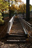 Old Wooden Staircase With Autumn Leaves On Steps