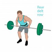 Athletes perform exercises with barbell. Rear delt row. Editable