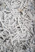 Shredded Paper Documents