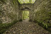 foto of cobblestone  - Old cobblestone ruins creating a room with walls in a forest
