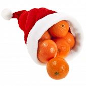 Fresh ripe tangerines in a christmas hat  isolated on a white background