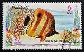 RAS AL-KHAIMAH - CIRCA 2006: A stamp printed in Ras al-Khaimah shows a fish Chelmon rostratus Copper