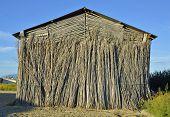 old tobacco farm facade