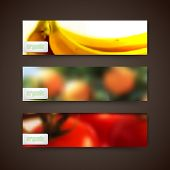 banners with blurred background of orange grove, bananas, tomatoes and organic food labels, vector d