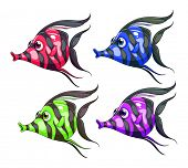 Four colorful fishes on a white background