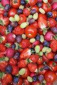 Colorful Organic Fruit Mix