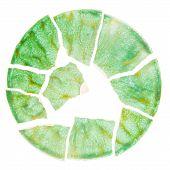 Broken Green Ceramic Plate