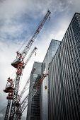Cranes and skyscrapers