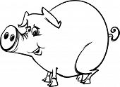 Farm Pig Cartoon Coloring Page