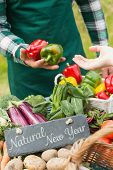 Natural New Year against fresh vegetables at farmers market