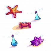 Image of beautiful beach vector dwellers