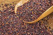 stock photo of quinoa  - healthy - JPG