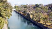 image of shogun  - canal water and tree landscape around nijo castle in Kyoto Japan - JPG