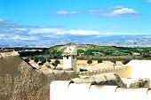 Perla Rooftop View