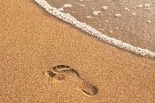 image of footprints sand  - footprint in golden sand on the shore of the sea - JPG