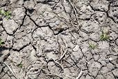 stock photo of water shortage  - driy soil on a field cracks on the field surface - JPG
