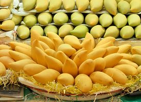 picture of mango  - The mango is a juicy stone fruit belonging to the genus Mangifera - JPG