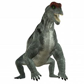 image of herbivore  - Moschops was a primeval herbivorous dinosaur that lived in South Africa in the Permian Period - JPG