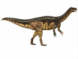 stock photo of herbivore  - Plateosaurus was a prosauropod herbivorous dinosaur that lived in the Triassic Age of Europe - JPG