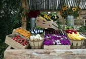 Vegetable Stand 1
