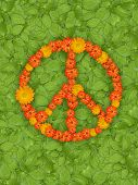 Peace symbol on green grass background