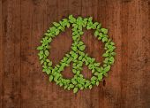 pic of woodstock  - Green plant peace symbol on wooden background - JPG