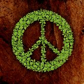 green plant peace symbol on stone background