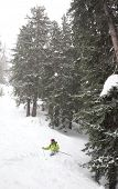 Freeride skier goes downhill in powder snow Mont Blanc Courmayeur Italy