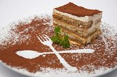 tiramisu dessert served on plate with special decoration. shallow dof.