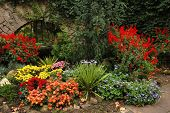 nicely designed autumn flower-bed