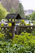 Birdhouse with Buckingham Palace as background, St James park, London.