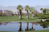 Palm Desert Golf Course Reflections