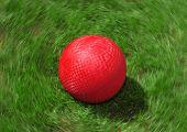 Red Playground Ball